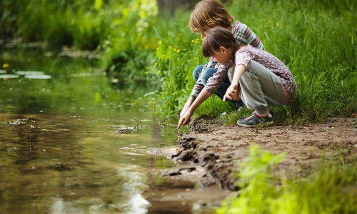 ekoloji-3 Ekolojik Düşüncede Eğitim Anlayışı