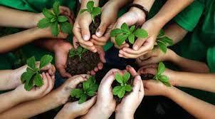Ekolojik Düşüncede Eğitim Anlayışı