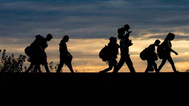 Suriye Kaynaklı Sığınma Hareketleri Sonrası Türkiye'de Göç Araştırmaları ve Lisansüstü Çalışmaların Durumu